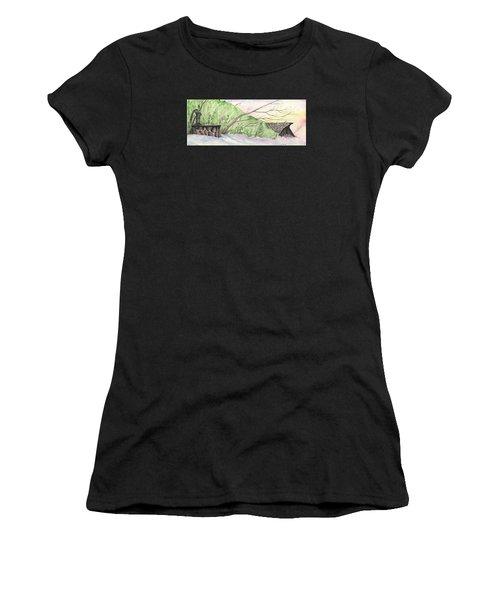 Watercolor Barn Women's T-Shirt