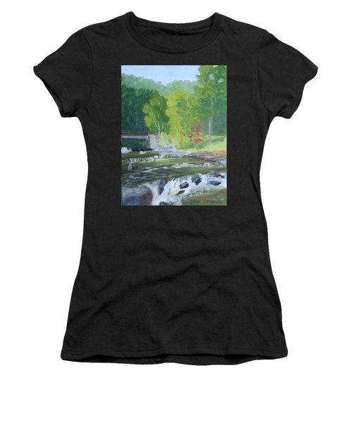 Whetstone Gulf State Park Ny Stream Women's T-Shirt