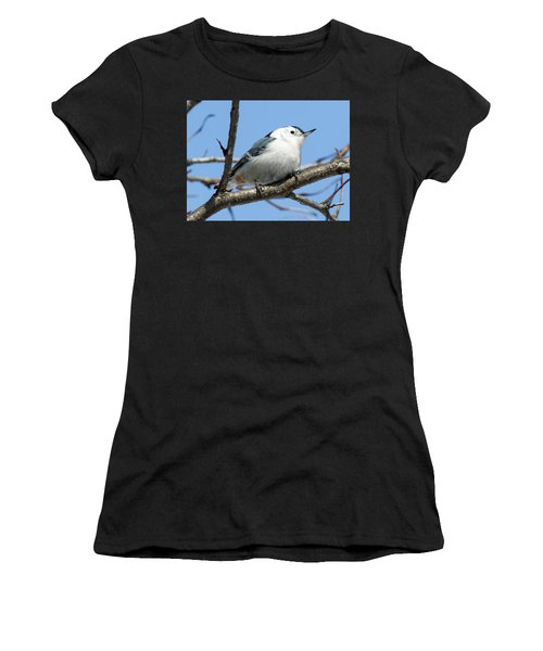 White-breasted Nuthatch Perched Women's T-Shirt