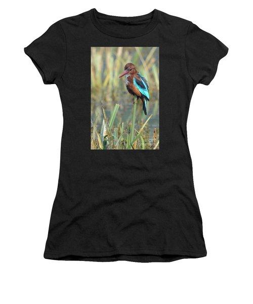 White-throated Kingfisher 13 Women's T-Shirt