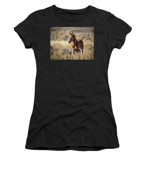 Wild Colt In Sand Wash Basin - Northwest Colorado Women's T-Shirt