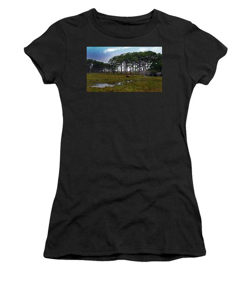 Wild Ponies Of Assateague Women's T-Shirt (Athletic Fit)