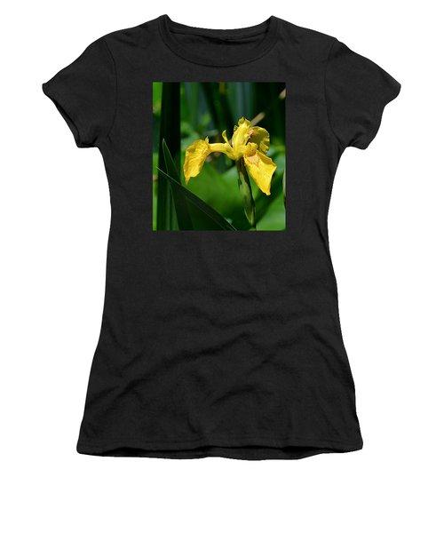 Wild Yellow Iris Women's T-Shirt (Junior Cut) by Kathy Eickenberg