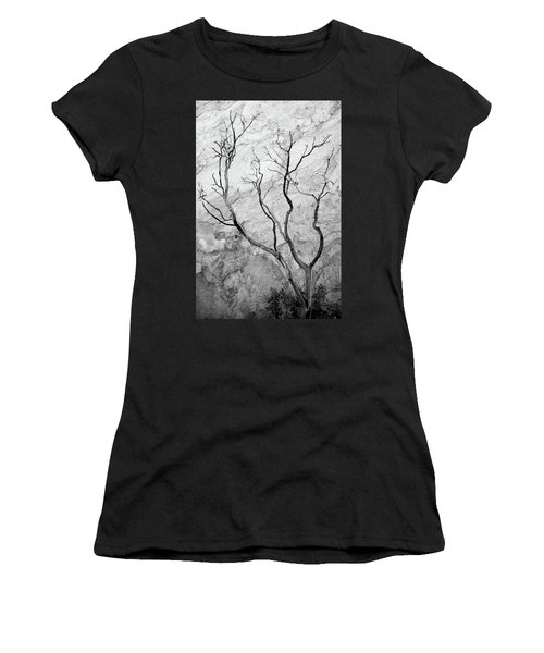 Wildfire Manzanita Women's T-Shirt