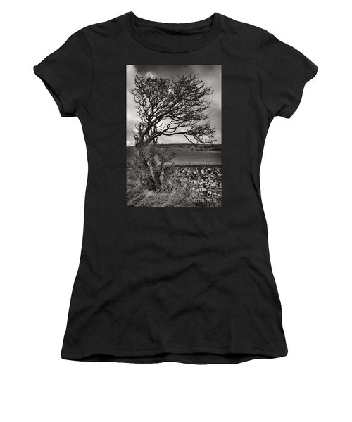 Windswept Tree In Winter Women's T-Shirt