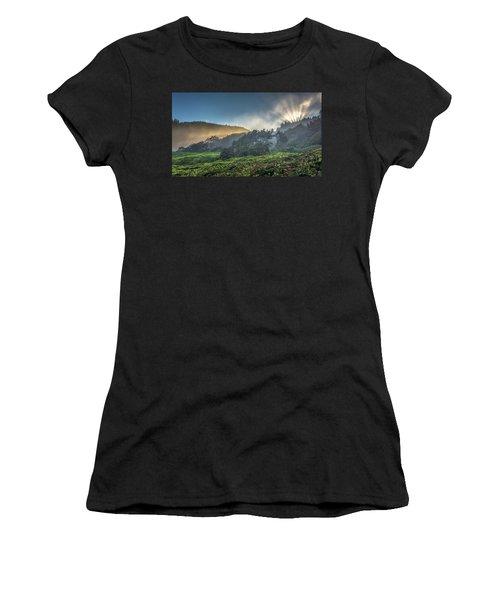 Windswept Trees On The Oregon Coast Women's T-Shirt