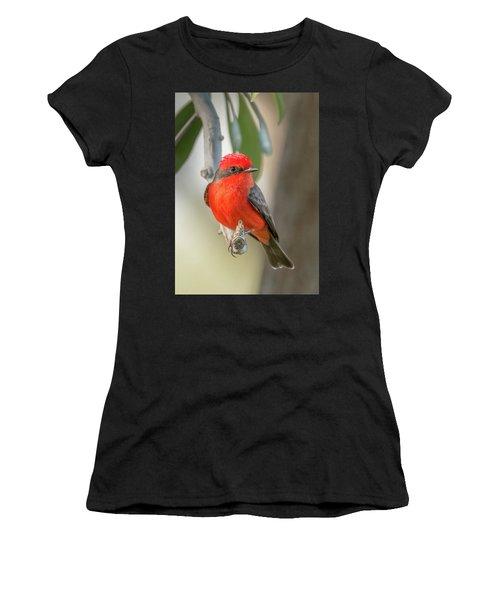 Winged Zorro Women's T-Shirt