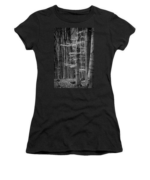 Winter Beech Women's T-Shirt (Athletic Fit)