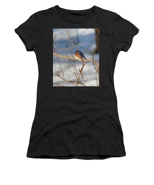 Winter Bluebird Art Women's T-Shirt