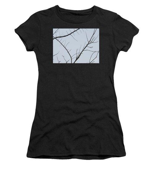 Winter Branches Women's T-Shirt