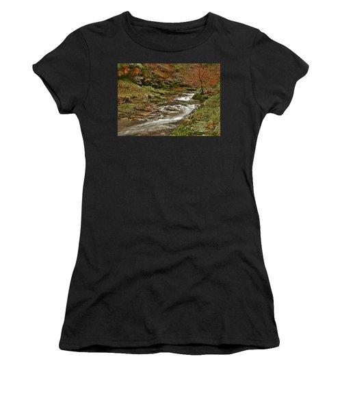 Winter Forest Stream Women's T-Shirt