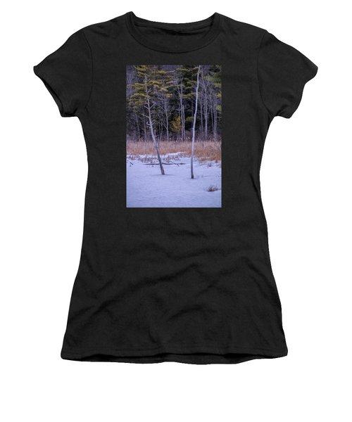 Winter Marsh And Trees Women's T-Shirt