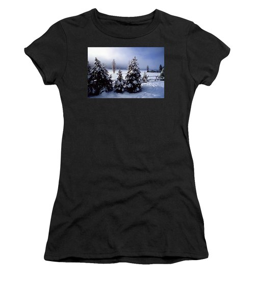 Winter Takes All Women's T-Shirt