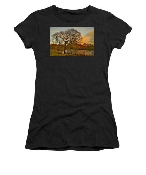 Winter Tree On The River Tweed Women's T-Shirt