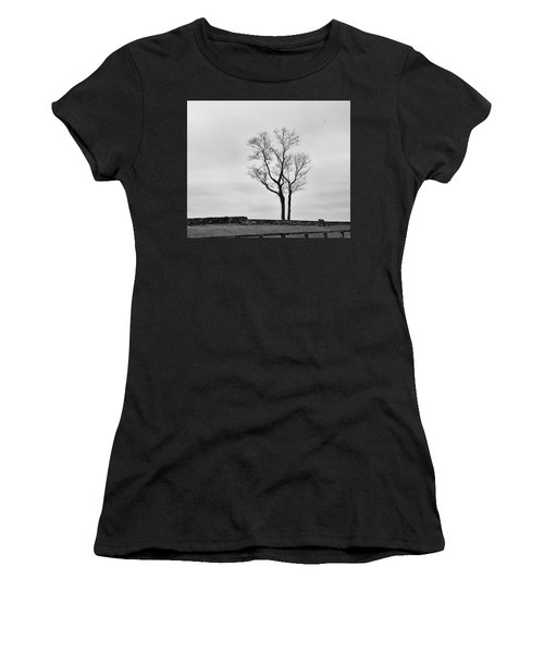 Winter Trees And Fences Women's T-Shirt
