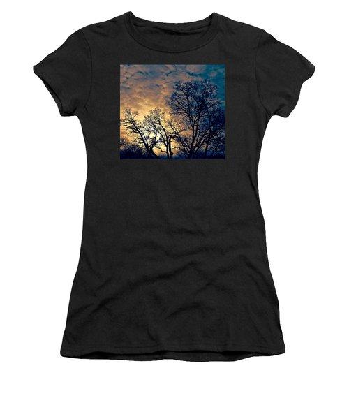 Winter's Afternoon Women's T-Shirt (Junior Cut) by Rita Mueller