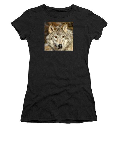 Wolf Portrait Women's T-Shirt (Athletic Fit)