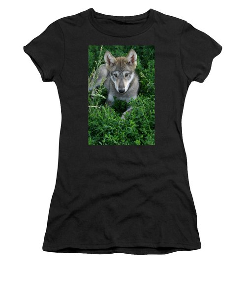 Women's T-Shirt (Junior Cut) featuring the photograph Wolf Pup Portrait by Shari Jardina