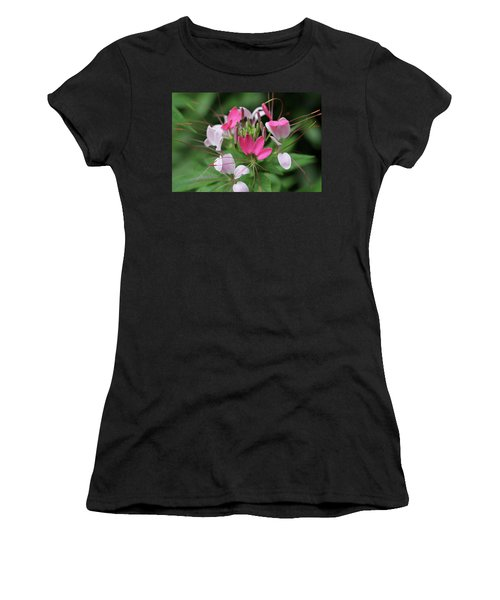 Wonders Of Cleome Women's T-Shirt (Junior Cut) by Deborah  Crew-Johnson