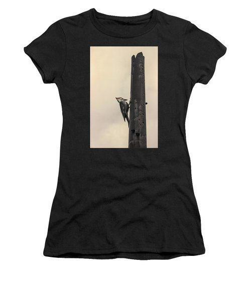 Woodpecker Women's T-Shirt