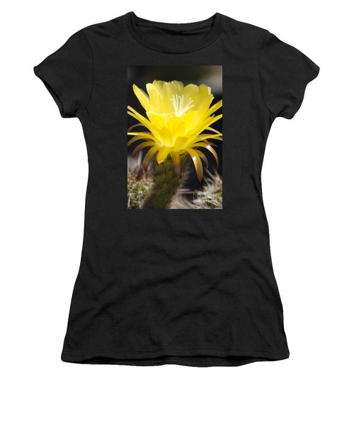 Yellow Cactus Flower Women's T-Shirt (Athletic Fit)