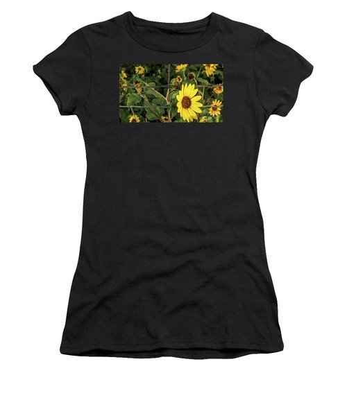 Yellow Flower Escaping From A Barb Wire Fence Women's T-Shirt
