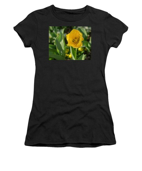 Yellow Tulip Women's T-Shirt