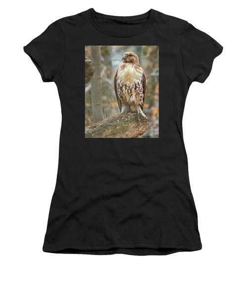 Young Red Tailed Hawk  Women's T-Shirt (Athletic Fit)