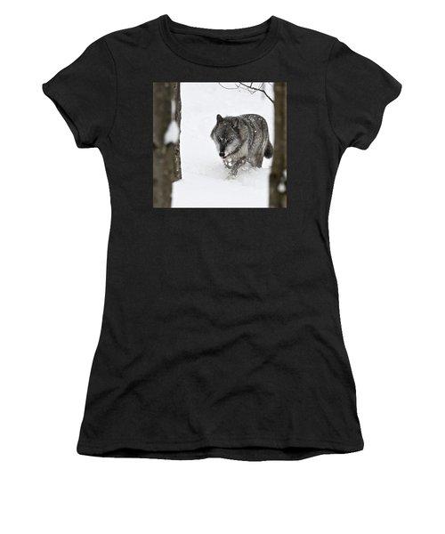 Timber Wolf Women's T-Shirt