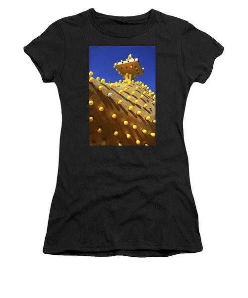 Women's T-Shirt featuring the photograph Alladin by Skip Hunt
