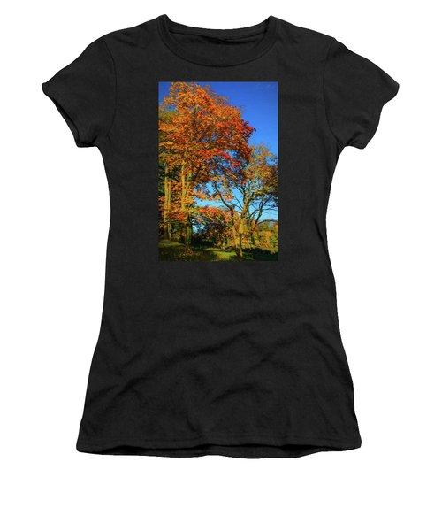 Bernharts Dam Fall 12-026 Women's T-Shirt