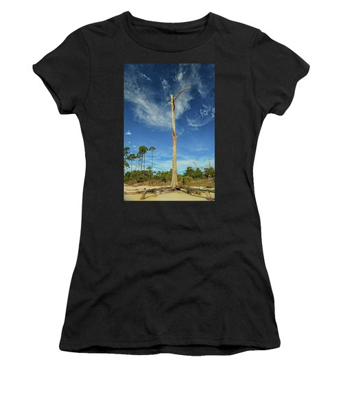 Blue Skies And Broken Branches Women's T-Shirt