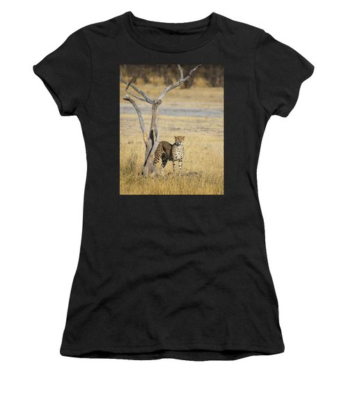 Women's T-Shirt (Athletic Fit) featuring the photograph Cheetah by John Rodrigues