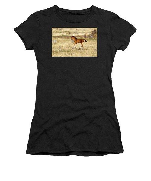 Cute Wild Bay Foal Galloping Across A Field Women's T-Shirt