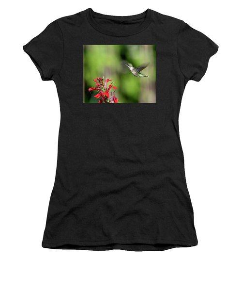 Female Ruby-throated Hummingbird Dsb0320 Women's T-Shirt