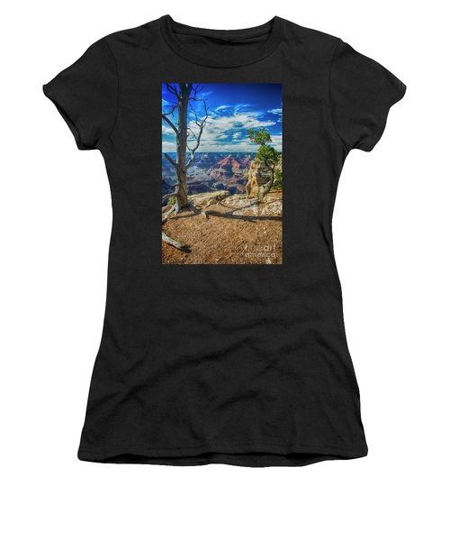 Grand Canyon Springs New Life Women's T-Shirt