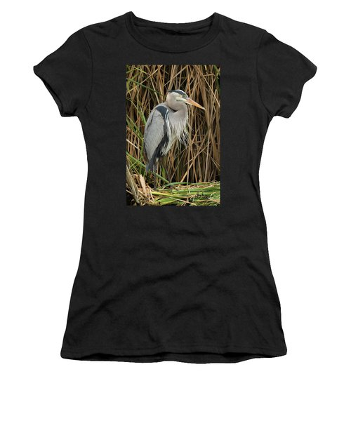Great Blue Heron On Padre Island Women's T-Shirt