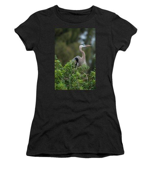 Great Blue Heron Portrait Women's T-Shirt
