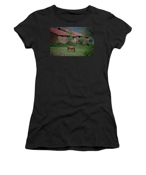 Horse In The Field Next To A Rural House Women's T-Shirt