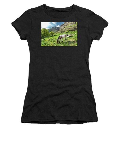 Horse On Balkan Mountain Women's T-Shirt