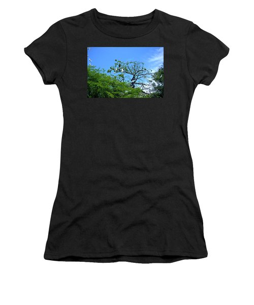 Ibis Risen Women's T-Shirt
