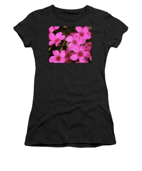 Pretty Pink Phlox Women's T-Shirt