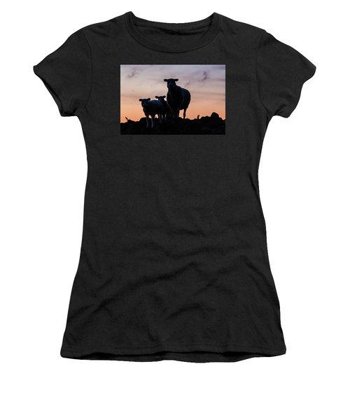 Women's T-Shirt featuring the photograph Sheep Family by Anjo Ten Kate