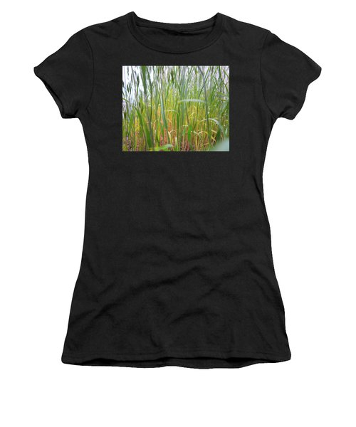 Women's T-Shirt (Athletic Fit) featuring the photograph Tall Grass In Herat by SR Green