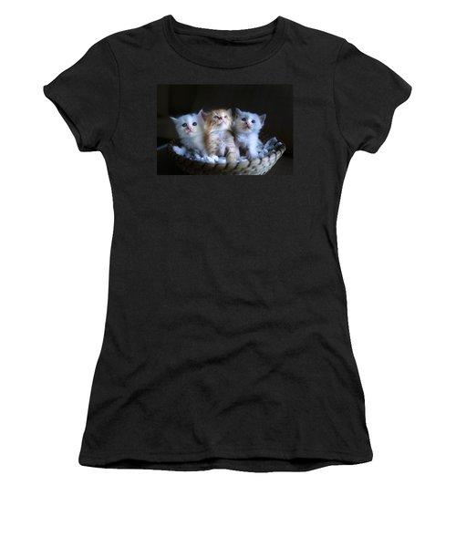 Three Little Kitties Women's T-Shirt (Athletic Fit)