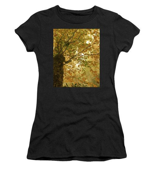 Yellow Fall Leaves - Blue Ridge Parkway Women's T-Shirt