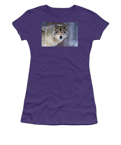 Timber Wolf Women's T-Shirt (Junior Cut) by Michael Cummings