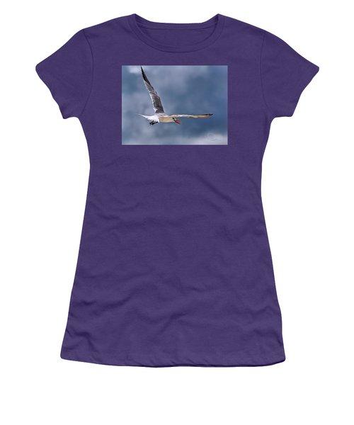 Royal Tern 1 Women's T-Shirt (Junior Cut) by Ludwig Keck