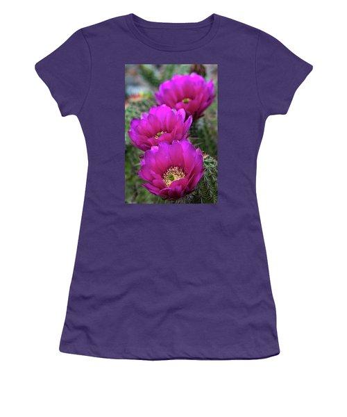 Women's T-Shirt (Junior Cut) featuring the photograph Pink Hedgehog Cactus  by Saija Lehtonen