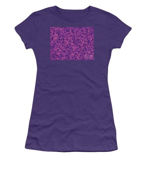 Dark Matter Distribution Women's T-Shirt (Junior Cut)
